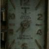 Swiss Antimagnetic Thuya watch