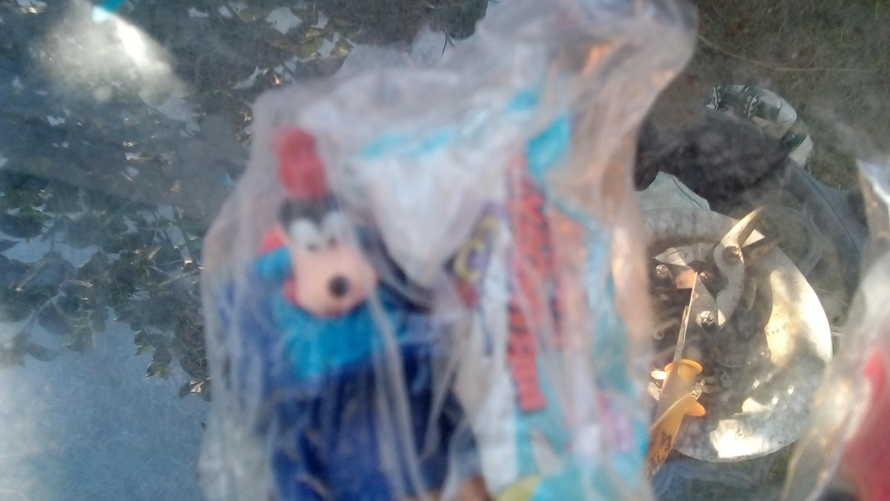 DISNEY TOYS AND DOLLS, BANKS FROM 60'S AND 70'S 80'S appraisal